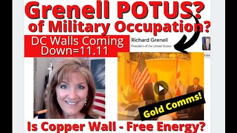 RICHARD GRENELL POTUS OF MILITARY OCCUPATION 11.11 ARRESTS-DC WALL COMING DOWN! HAPPY SPRING 3-20-21