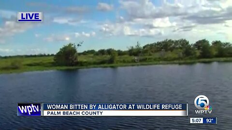 Woman recovers from gator bite