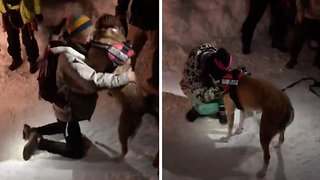 Woman breaks down in tears of happiness after being reunited with beloved dog who fell down cavern