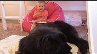 "Toddler ""reads"" Cinderella to her giant dog and it's hilariously adorable"