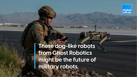 Ghost Robotics' robot dogs are joining the military