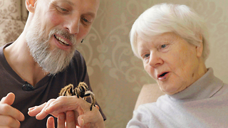 The Creepy Crawlies Helping People With Dementia - Video