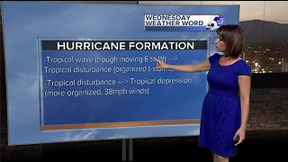 Rachel's Wednesday Wx Word: Hurricane Stages - Video