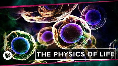 The Physics of Life (ft. It's Okay to be Smart & PBS Eons!)