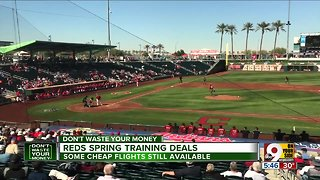 Winter got you down? Have about a trip to spring training?