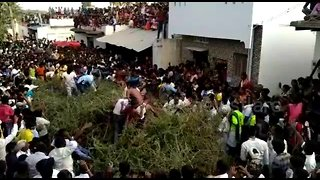 Indian villagers jump into huge pile of thorns from rooftops in bizarre ritual