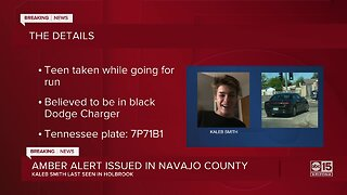 Amber alert issued in Navajo County