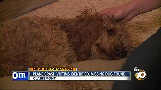 Plane crash victims identified, missing dog found