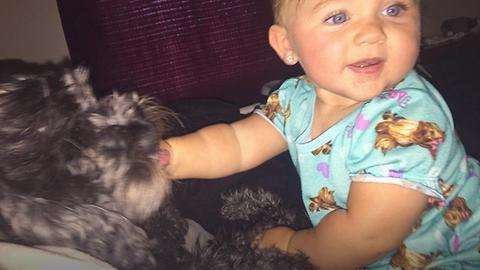 Dog Saves Baby From Deadly House Fire