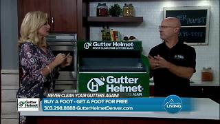 Never clean your gutters again - Video