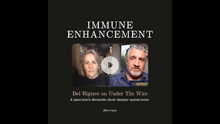 Under The Wire Recap - Del Bigtree speaks about Immune Enhancement from COVID shots