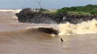 Surfers Enjoy 'Novelty Wave' in Wake of New South Wales Flooding - Video