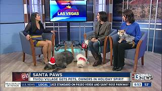 Santa Paws at Tivoli Village - Video