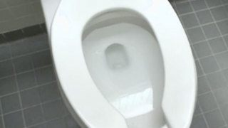 Former Florida librarian sues Tarpon Springs for exploding toilet - Video