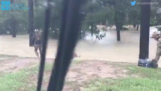 Hurricane Harvey Twitter Video