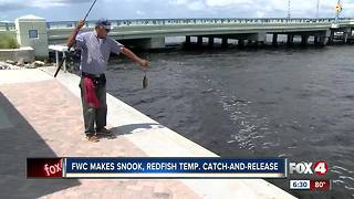 FWC: Catch & release only for snook and redfish - Video