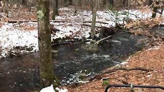 Beautiful winter stream