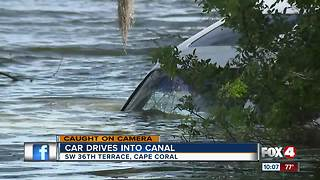 Car plunges into Cape Coral canal - Video