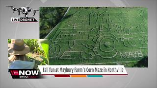 Check out this Northville Corn Maze from above - Video