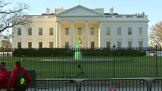 White House fountains flow green for St. Patrick's Day - Video