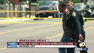 Man struggles with police at National City standoff - Video