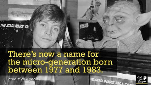 Find Out About The Micro-Generation Born Between '77 and '83