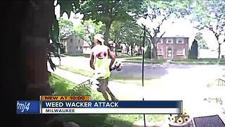 Milwaukee woman's yard ruined by angry man with weed wacker - Video