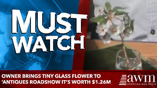 Owner Brings Tiny Glass Flower To 'Antiques Roadshow It's Worth $1.26M - Video