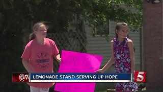 Hendersonville Girls' Lemonade Stand Gives Back - Video