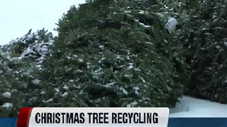 Christmas tree recycling in Nampa - Video