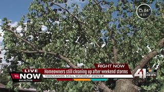 Thousands still without power as weekend storm cleanup continues