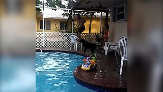 Dad's Epic Pool Fail - Video
