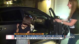 Dog feared stolen, returned to owners - Video