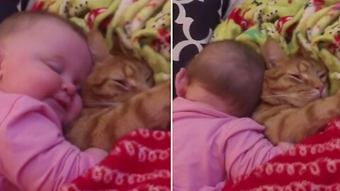 Sweet kitten lets baby adorably cuddle with her