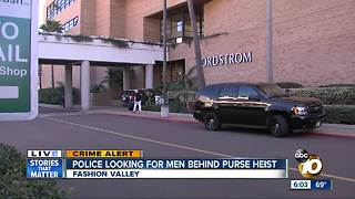 Police search for men in Fashion Valley purse heist