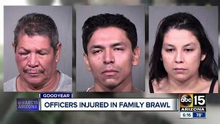 Body camera released after officers were injured in a family brawl - Video
