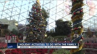 Holiday activities to do with the family - Video