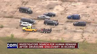 Police: Human remains found in Ecorse