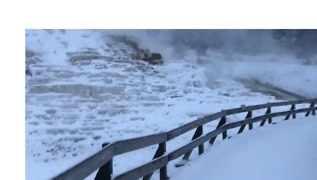 First Significant Snow Falls at Yellowstone - Video