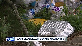 Constant struggle with blight, illegal dumping leaves neighborhood weary