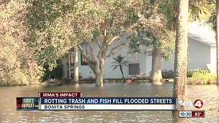 Bonita Springs submerged again after Irma