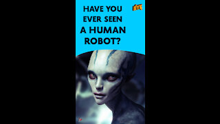 What Is A Humanoid?