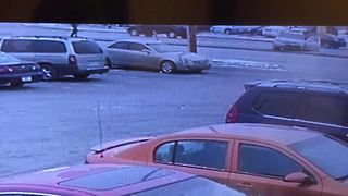 Carjacking suspect crashes, fires shots at police before being fatally shot - Video