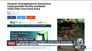 Disaster Unemployment Assistance could provide Florida residents relief after Irma - Video