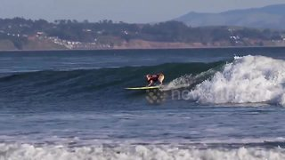 Dog shows off amazing surfing skills on California beach - Video