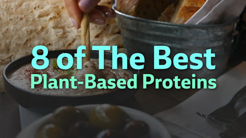 Fifteen best plant-based proteins