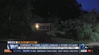 Another round of storms brings down trees - Video