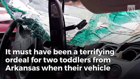 Toddlers Survive Alone for Days Without Food and Water After Mother Killed in Car Wreck