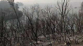 Carr Fire Leaves Devastation Around California Lake - Video