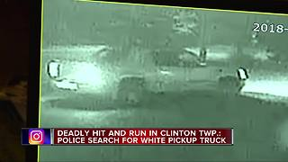 Police investigating fatal hit-and-run crash in Clinton Township - Video